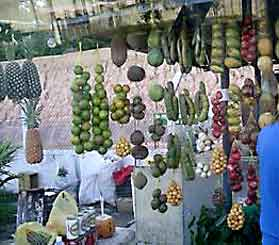Brazillian roadside fruit stands.