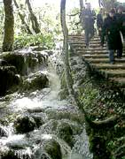 Stairway to magic at Plitvice National Park in Croatia.