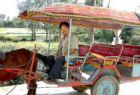Having fun on the road is important. Here is my amazing horse cart ride through the countryside of Dali, China.